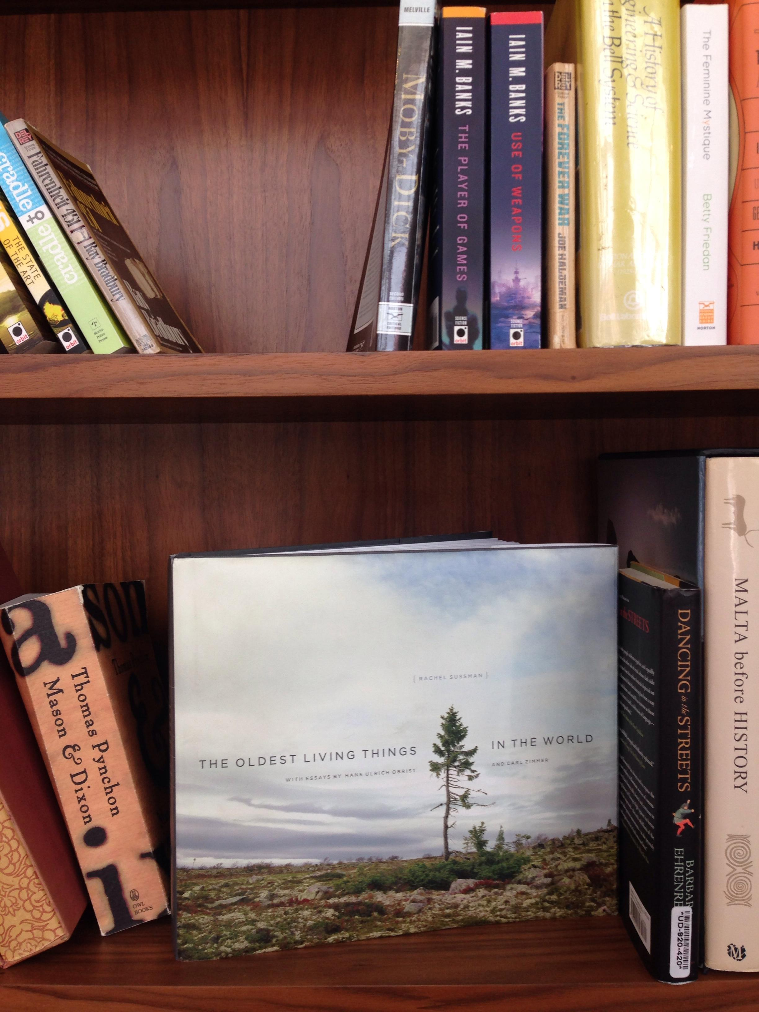 migliore libreria - 28 images - stunning libreria scala trento ideas ...